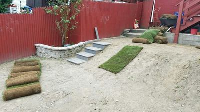 best-sod-instllation-company-nearby_1