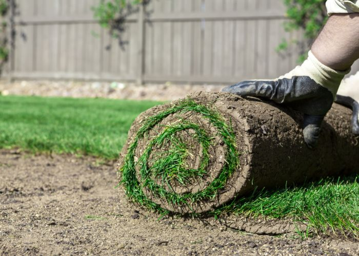 expert landscaping services in Boston include our sod installation