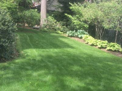 landscaping-and-lawn-maintenance-in-newton-ma_1